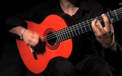 Celebración día del Flamenco